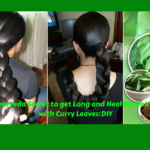 Ancient Ayurveda Secret to get Long and Healthy Hair in 1 Month with Curry Leaves: DIY