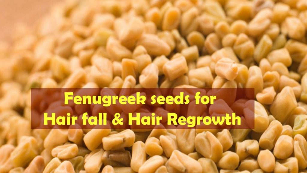 How to Use Fenugreek for Hair Loss, Hair Thinning and Hair Re-Growth