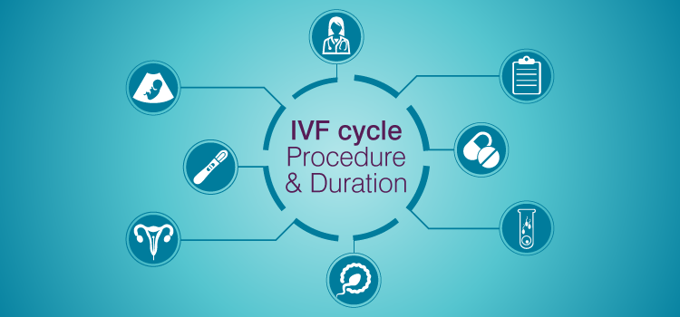 How does IVF Process Work?