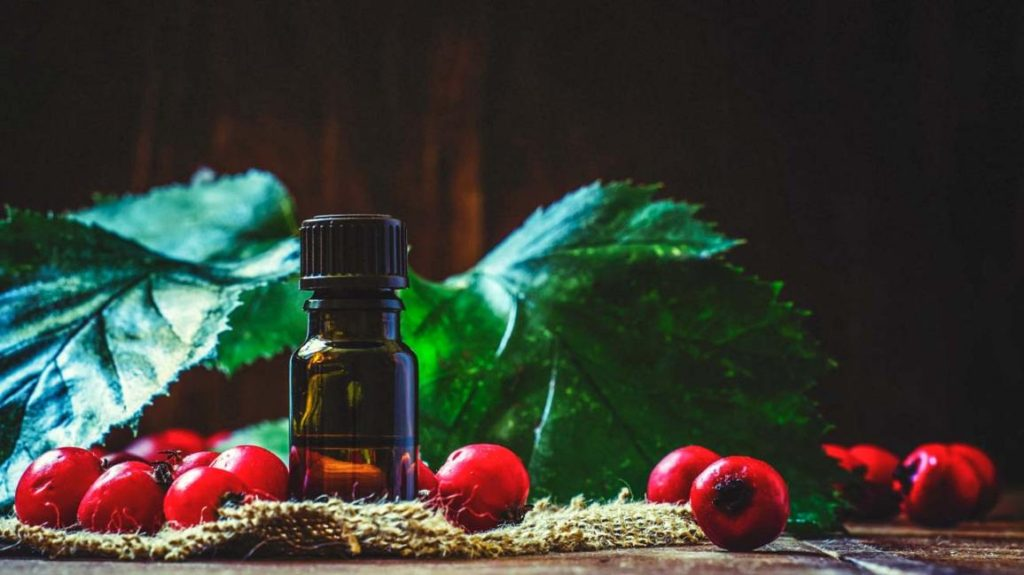 Rosehip Oil Benefits Which You Should Know About